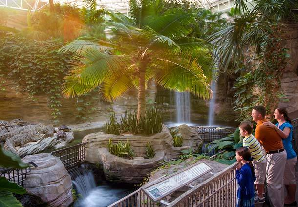 gaylord_palms_12